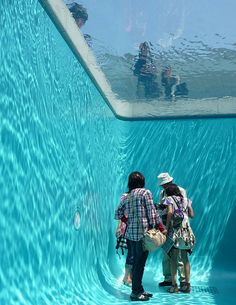A room that looks like the inside of a swimming pool - trippy!
