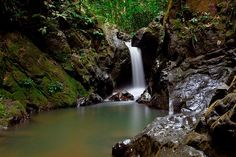 Raman Waterfall, Phang Nga Province, Thailand.    View on Black     See amazingly beautiful works of art of creative photography   on my Photo Pinns board @http://bit.ly/RJgSdp and visit http://www.photopinns.com to see awesome videos, news, tips, trick and trend