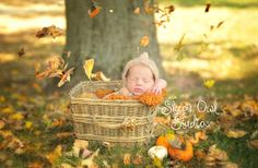 Newborn Photography | Sleepy Owl Studios