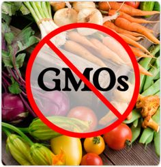A list of GMO Free Food Companies - must-have for grocery shopping!