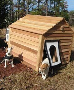 Keep your dog cool during these hot days - climate controlled dog house