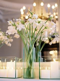 Beautiful Ambience white flowers, table centrepieces, event planning, centerpiec, wedding ideas, glass containers, candl, clean lines, romantic flowers