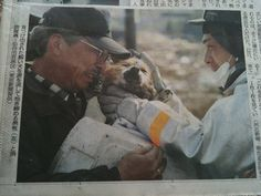 dog is reunited with his owner following the tsunami in Japan in 2011.