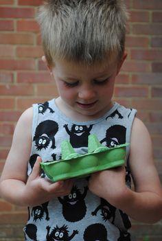 Egg carton seed starter