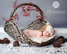 Cute Idea for an Autumn or Winter Baby-- Autumn  have colorful  leaves instead of pinecones Sleep baby bear - Featured on Explore! by Jill Serrano Photography, via Flickr