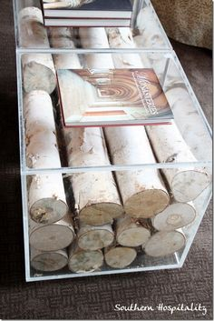 Birch logs inside a lucite coffee table -