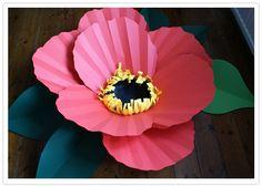 DIY giant paper flower poppy