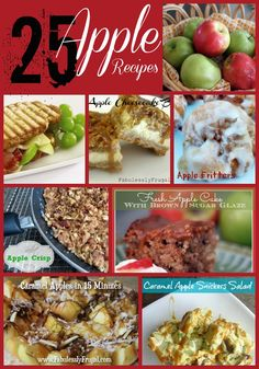 25 Apple Recipes including Cake, Pie, Fritters, Caramel, Cheesecake, Cider, Sandwiches, Sauce, Oatmeal and More! http://fabulesslyfrugal.com/25-apple-recipes/