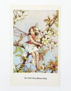 Wild Cherry Blossom Fairy Picture Vintage by PeonyandThistlePaper, £4.50