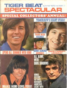 Tiger Beat Spectacular Dec. 1971 Osmond, Cassidy, Susan Dey, BOBBY SHERMAN, J-5