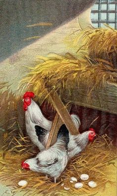 Rooster & Hens Painting