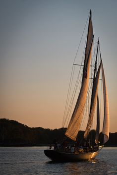 Buy a sailboat and learn to sail