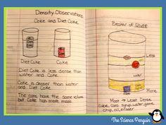 Relative Density Science Notebook and Activities