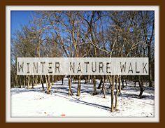 Winter Nature Walk: