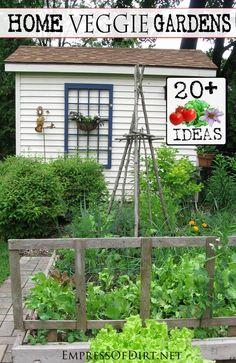 20+ Ideas for your home veggie garden