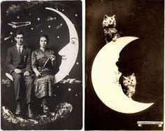 paper moon paper moon
