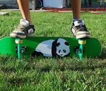 Panda skatebord