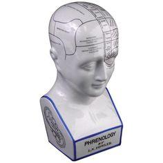 SOURCE: Lamps Plus - Ceramic Phrenology Head