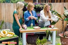 Foodie Gardener, Shirley Bovshow shows how to grow banana plants in a container on the Home  Family show, Hallmark channel