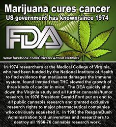 Legalize Marijuana ...