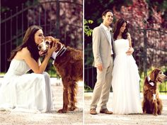 A bride a groom and a dog.
