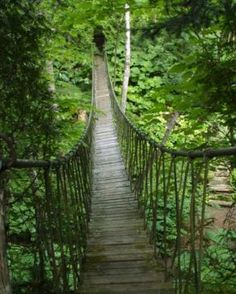 Reminds me of the swinging bridge at Camp Ondessonk on the way to tribe Amantacha. Ahhh, memories, esp. ticks and dry-shaving legs (ouch!).