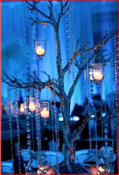 have these stuck in a vase with like blue pebbles or fake snow and little lanterns with the stick painted white or silver makes you feel as if your in a winter wonderland!
