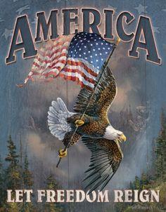 America  -  Let Freedom Reign.....hopefully, forever!