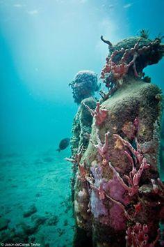 Artist skinks statues to the ocean floor to grow coral reefs, so beautiful