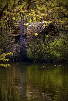 Little cabin on a lake in the woods. Can't get any more perfect than this.