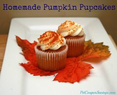 Homemade Pumpkin Pupcakes! That's right, these lovely cupcakes are for your pup. :) #pumpkin #homemade #dogs