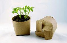 party favors, reuse recycle, toilet paper rolls, paper towel rolls, toilet paper tubes, planting seeds, planter, garden, parti