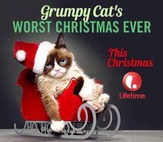 """Its a Wonderful Movie - Your Guide to Family Movies on TV: Lifetime Christmas Movie: """"Grumpy Cat's Worst Christmas Ever"""""""