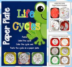 Paper Plate Life Cycles, Frog, Pumpkin, Apple, Sunflower and more$