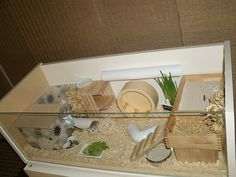 Homemade IKEA hack hamster cage. Stylish.