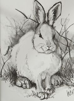 Snow Hare Charcoal by Sarafina Fiber Art