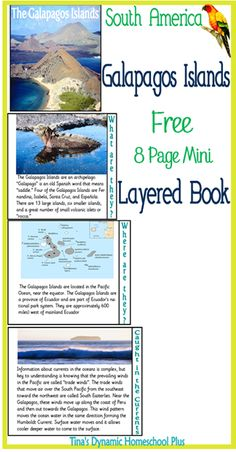 Layered book for The Galapagos Islands  #galapagos #southamerica #homeschool #ihsnet