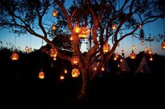 Lantern Tree, Montauk, New York
