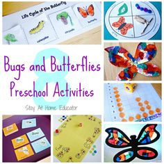 Eight Bugs and Butterflies Preschool Activities - Stay At Home Educator