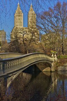 Bow Bridge View - Central Park | Flickr - Photo By: Ron Diel   #WestHouseNY #Hotel #CentralPark #BowBridge #Bridge #NYC