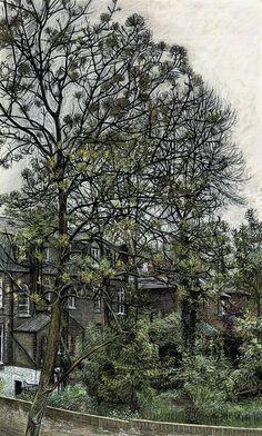 Ash Tree, Spring, Christopher Bramham. English born in 1951.