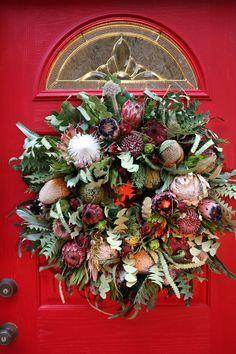 Protea in a Christmas wreath.