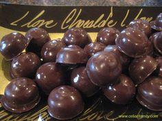 Chocolate-Covered Macadamia Nuts -- gluten-free