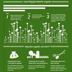 Organic farming - converting farmland to organic
