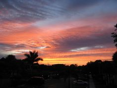 Nov. sunset by biverson, before the Palm grew tall enough to block the view.