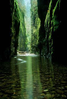 """EMERALD GORGE."" Columbia River Gorge, Oregon. Reflected light inside Oregon's Oneonta Canyon. Photo by Marc Adamus."
