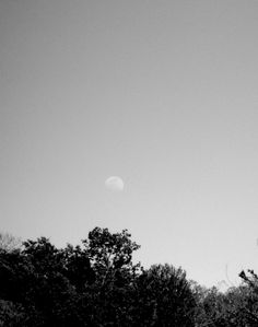 Black and white moon