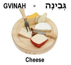 Hebrew word cheese/gvinah.