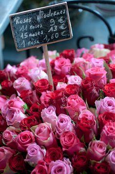 Roses in Parisian flower shop, Paris, France