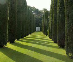the perfect garden ,Fernando Caruncho.Photo Helena de la Guardia.